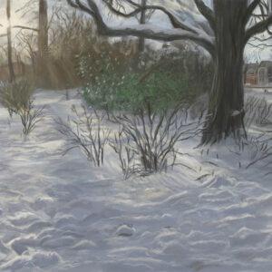 Kenaupark Winter sneeuw door Stefan de Groot