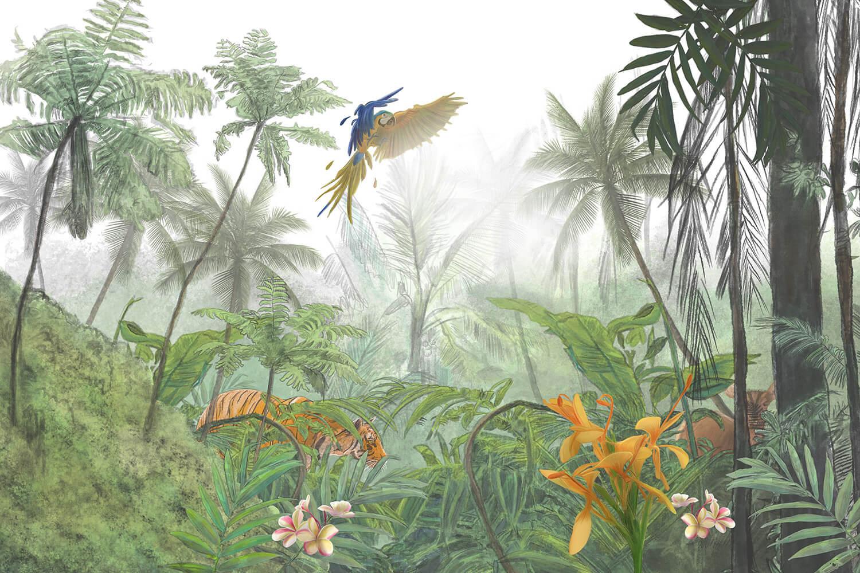 Jungle Borneo door Stefan de Groot